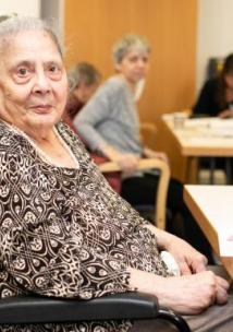 Older Woman Wheelchair